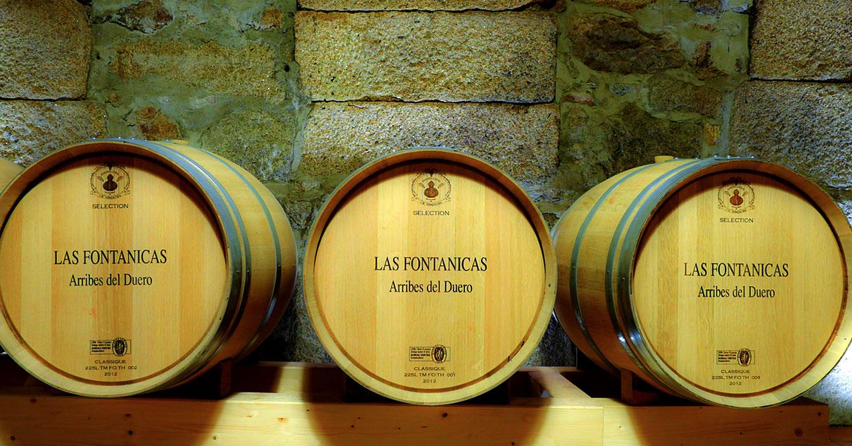 Las Fontanicas - barricas